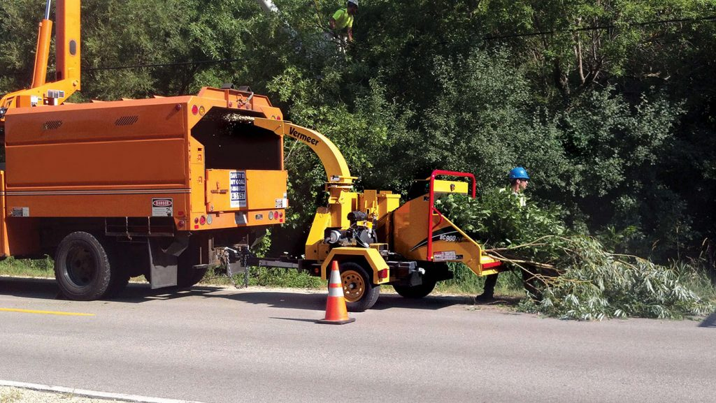 Commercial Tree Services-Imperial Beach CA Tree Trimming and Stump Grinding Services-We Offer Tree Trimming Services, Tree Removal, Tree Pruning, Tree Cutting, Residential and Commercial Tree Trimming Services, Storm Damage, Emergency Tree Removal, Land Clearing, Tree Companies, Tree Care Service, Stump Grinding, and we're the Best Tree Trimming Company Near You Guaranteed!
