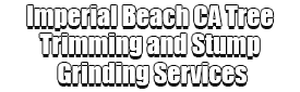 Imperial Beach CA Tree Trimming and Stump Grinding Services Logo-We Offer Tree Trimming Services, Tree Removal, Tree Pruning, Tree Cutting, Residential and Commercial Tree Trimming Services, Storm Damage, Emergency Tree Removal, Land Clearing, Tree Companies, Tree Care Service, Stump Grinding, and we're the Best Tree Trimming Company Near You Guaranteed!