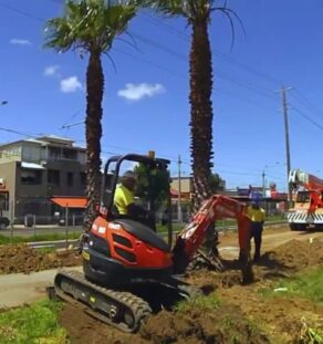 Palm Tree Removal-Imperial Beach CA Tree Trimming and Stump Grinding Services-We Offer Tree Trimming Services, Tree Removal, Tree Pruning, Tree Cutting, Residential and Commercial Tree Trimming Services, Storm Damage, Emergency Tree Removal, Land Clearing, Tree Companies, Tree Care Service, Stump Grinding, and we're the Best Tree Trimming Company Near You Guaranteed!